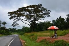 kontrast dla szarych ulic Monrovii